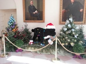 Even Bo Obama Helped with the Decorations